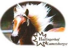 Franz und Silvia Lumetsberger, Haflingerhof Lumetsberger