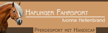 Haflinger Fahrsport, Ivonne Hellenbrand