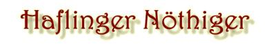 Haflinger Nöthiger