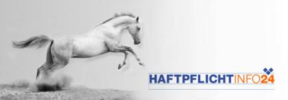 Haftpflicht Info 24, Pferde-Haftpflichtversicherung