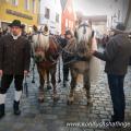 Haflinger Sandra Luber, Berchinger Rossmarkt