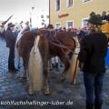Traditioneller Rossmarkt in Berching mit Kohlfuchs Haflinger Sandra Luber