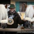 Sandra Luber, Berchinger Rossmarkt, Haflinger, Stoffl, Hengst, liz. Steiermark