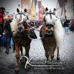 Berchinger Rossmarkt 2014, Auftrieb durch die Stadt, Sandra Luber