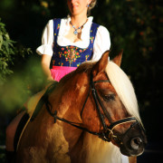 Haflinger Luber - Traumhengst liz. Steiermark - Sandra Luber, Berching, Pollanten